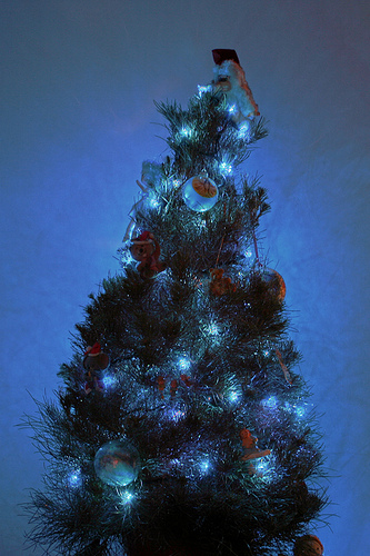 Blue Christmas Tree HDR